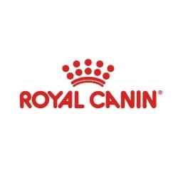 Royal Canin ravitoit kassile ja koerale