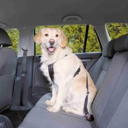 Turvavarustus autosse