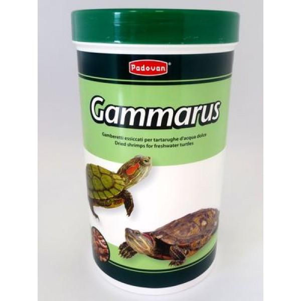 Pd kilpkonna täissööt gammarus 130g/1l-Miki24