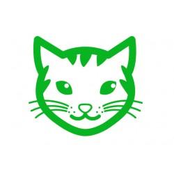 Farmina ravitoidud kassile