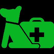 Ravi toetamiseks, haavadele (12)